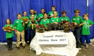 Cover photo for 2018 Coastal Chicken Project
