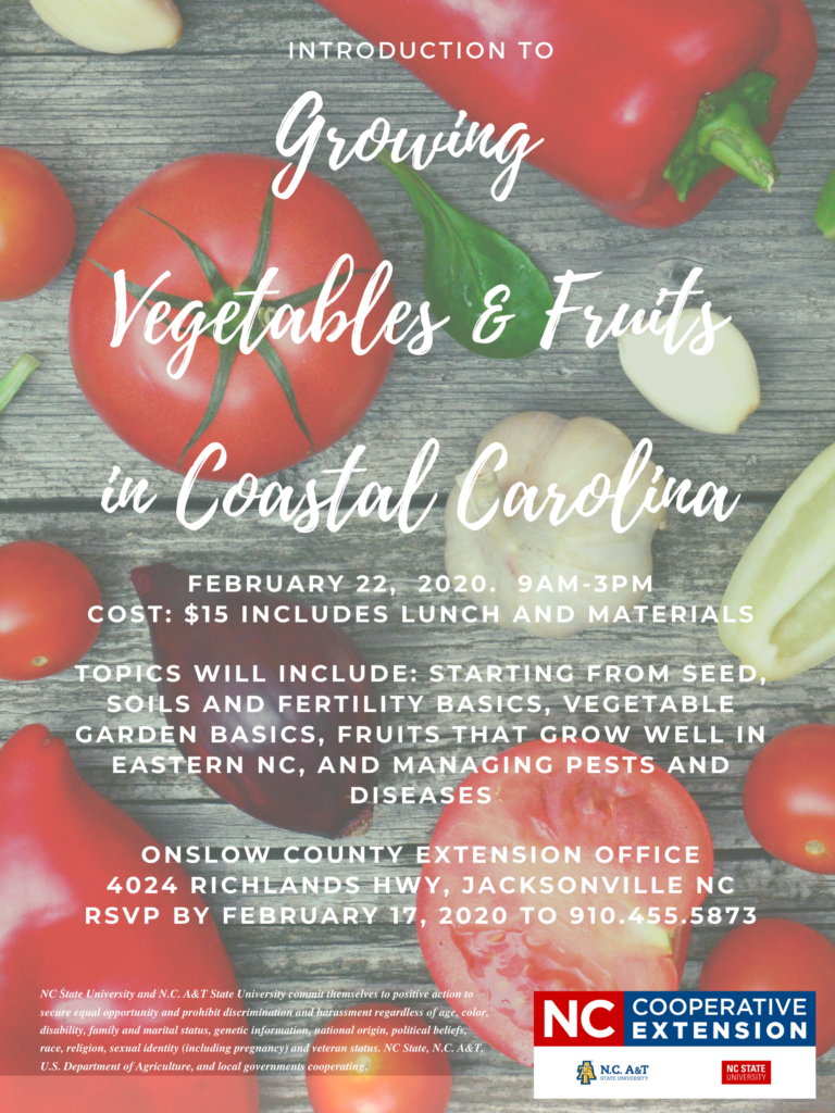 Intro to growing fruits and vegetables flyer