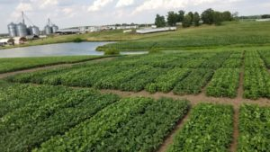 Cover photo for Behind Planting My Full Season Soybeans: What Maturity Group Can I Use?