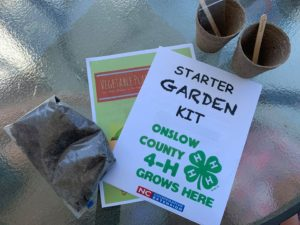 Cover photo for Seed Starting Kits Giveaway 2020
