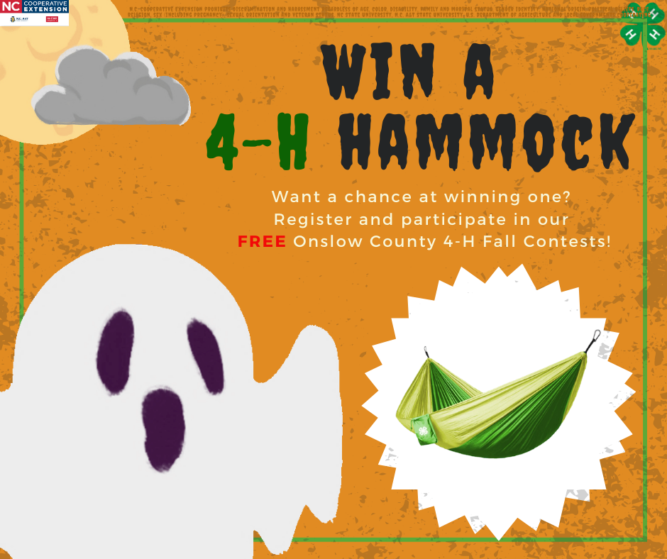 4-H contest flyer