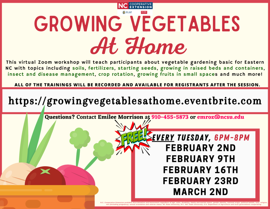 Growing Vegetables at Home flyer