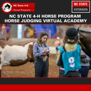 Cover photo for February 2021 NC 4-H Horse Program Newsletter