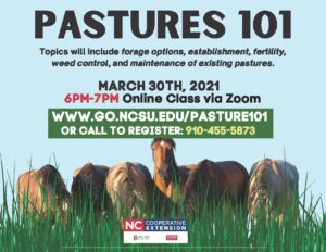 Cover photo for Pastures 101 (2021)