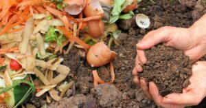 Cover photo for Backyard Composting 101: Recycle Your Food Waste